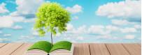 Livre sur les huiles essentielles bio et végétales