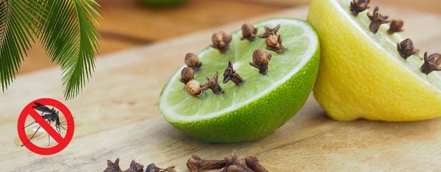 Anti-moustiques naturels aux huiles essentielles et végétales