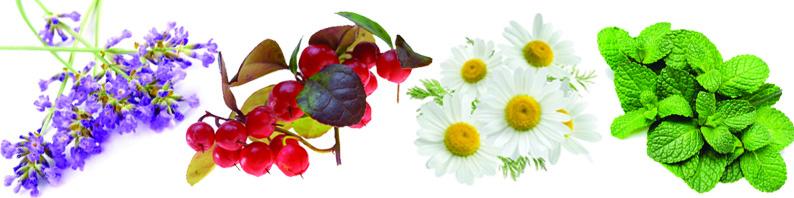 Cire parfumée anti migraine