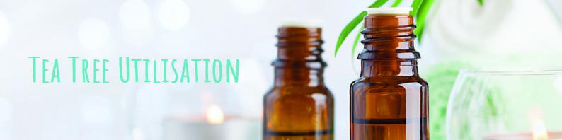 Huile essentielle tea tree bio utilisation bienfaits